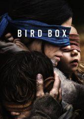 Bird Box Full izle Türkçe Dublaj 2018