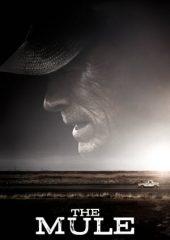 The Mule ( Kaçakçı ) Filmi izle 2018